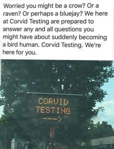 Corvid Testing